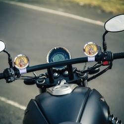 Diviniti Mettalic Bhagwan Vishnu Bike Frame